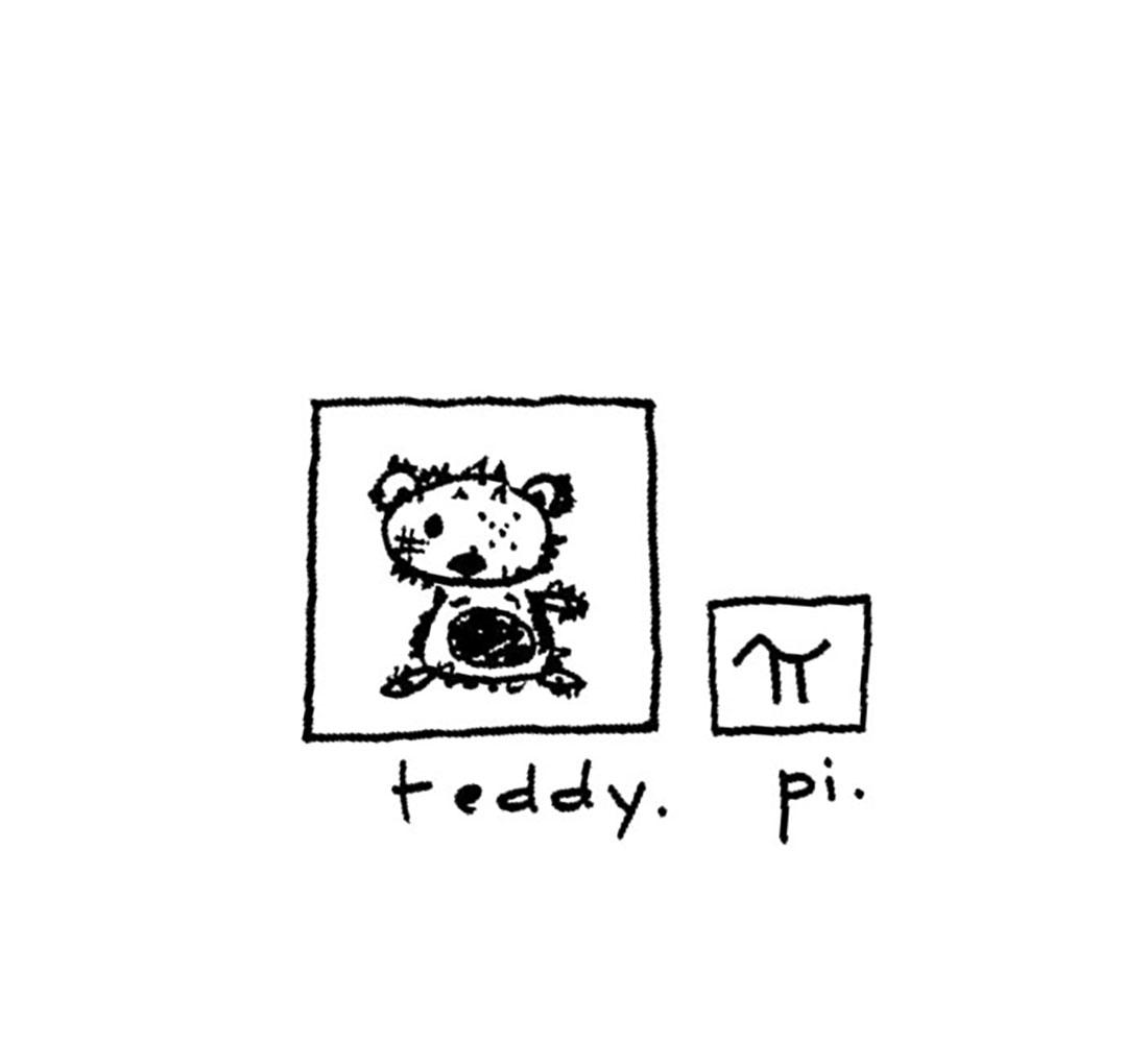 teddy + pi